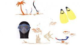 Flossen, Masken und Schnorchel